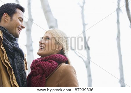 Low angle view of couple looking at each other in park during autumn