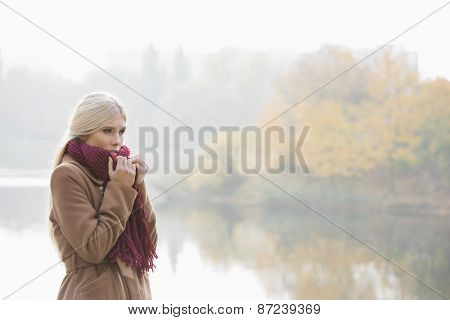 Thoughtful young woman wearing muffler at lakeside in park