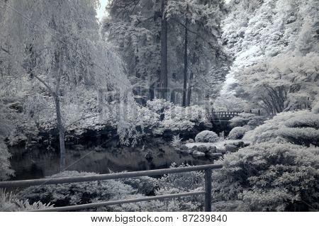 Japanese garden in infrared