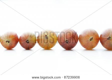 Gooseberry on white background - studio shot