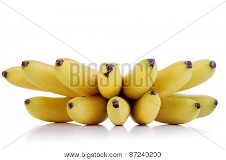 Studio shot of small bananas