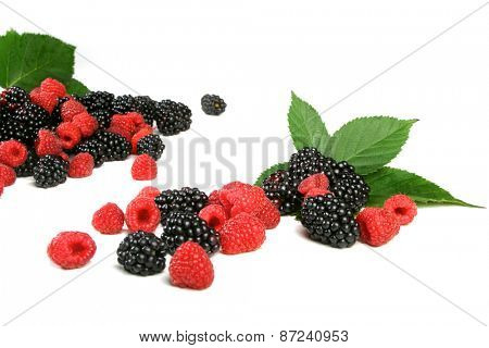 Berries on white backround - studio shot