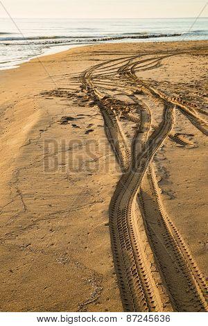 Tyre Tracks