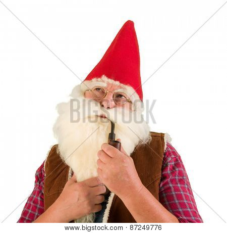 Serious garden gnome smoking an old pipe