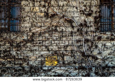 Old Wall In Trieste
