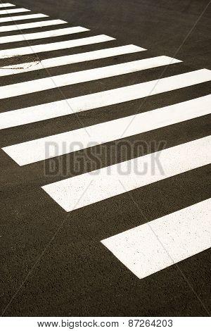 Crosswalk Markings Painted On The Asphalt In The City
