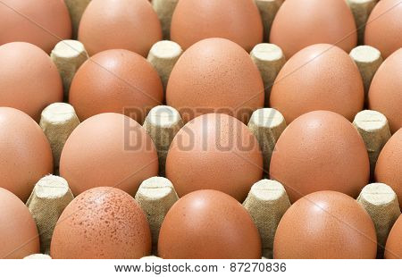 Eggs Background