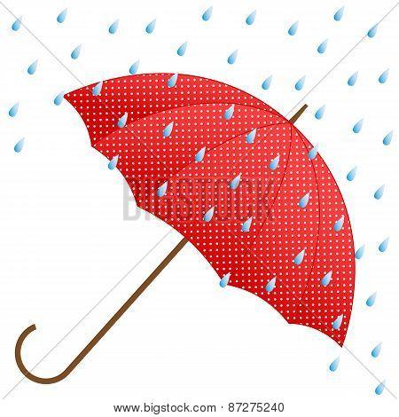 Red Umbrella And Rain.