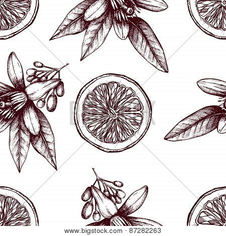Citrus Seamless Pattern With Orange Fruits And Flowers