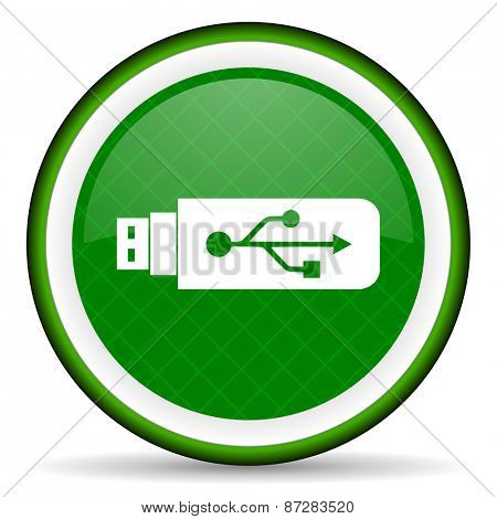 usb green icon flash memory sign