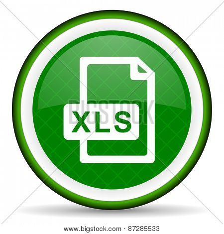 xls file green icon