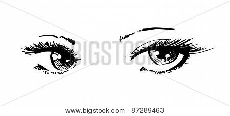 Beautiful Female Eyes