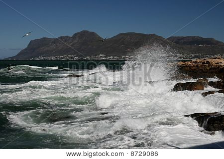 Rough Ocean And Rocks