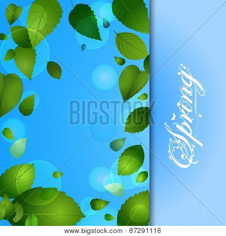 Spring Background With Leafs And Text
