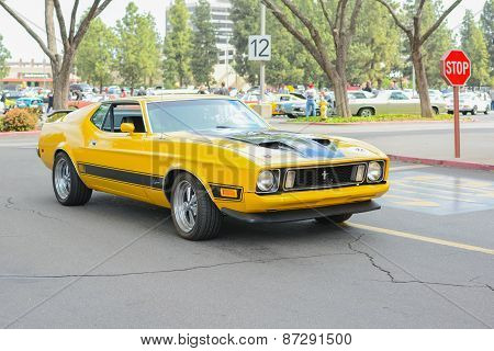 Ford Mustang Mach 1 Classic Car On Display