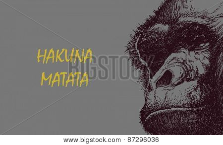 Ape head in black and white. Vector illustration with hakuna matata inscription.