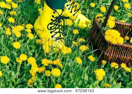 Legs with yellow shoes in dandelion flowers