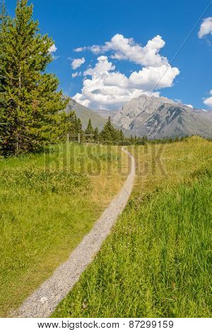 Fragment of a nice trail at Bow Lake in Alberta, Banff National Park, Canada.