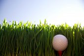 pic of dimples  - Golf ball hidden in the rough grass offset against a blue sky - JPG