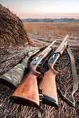 foto of shotgun  - Hunting shotguns on haystack while halt during sunrise - JPG