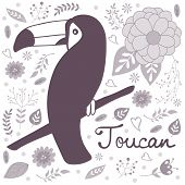 stock photo of toucan  - Colorful exotic toucan bird illustration in vector format - JPG