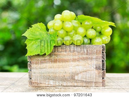 Green Grape In The Wooden Box