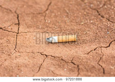 Cigarette Carelessly Thrown Into Red Soi