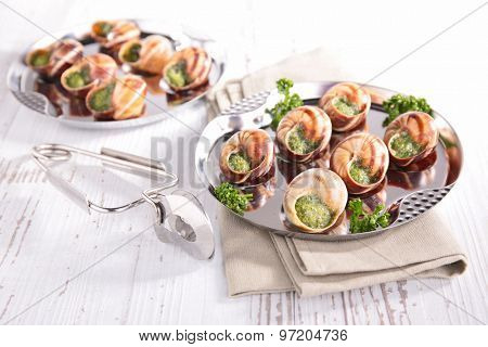 french gastronomy,snail