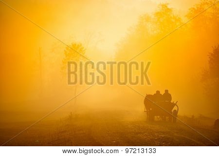 autumn sunrise landscape on foggy morning on field