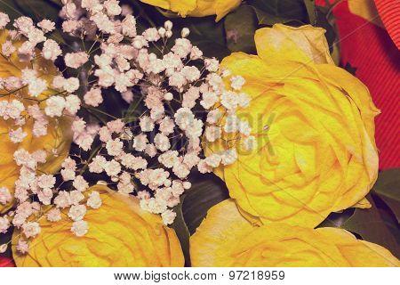 Yellow Rose Retro