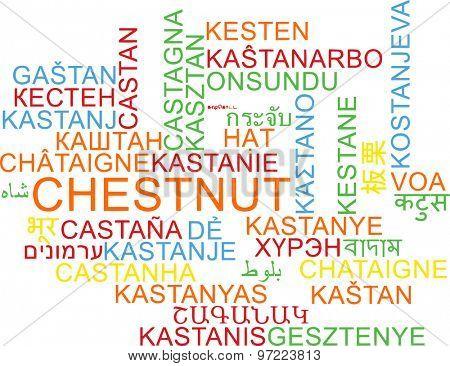 Background concept wordcloud multilanguage international many language illustration of chestnut