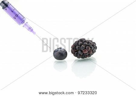 Genetic Modification, Blueberry, Blackberry, Fruit, Modification