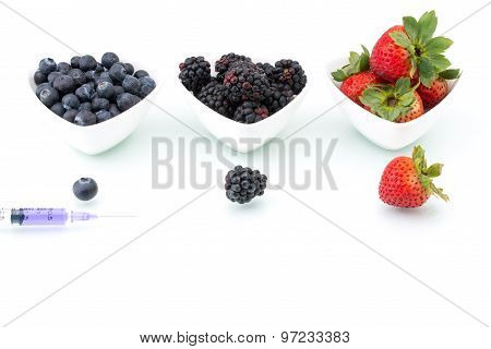 Genetic Modification, Blueberry, Blackberry, Strawberry, Fruit, Modification