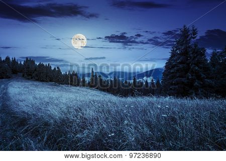 Meadow On A Hillside Near Forest At Night