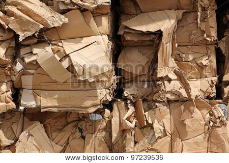 Bundles of cardboard  waste