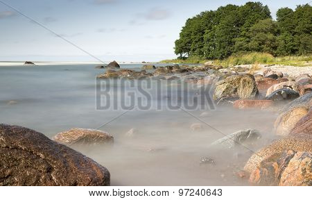 Rocks In Ocean With Trees