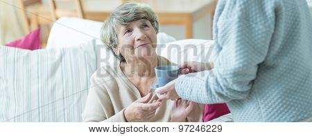 Good Care Of Elders