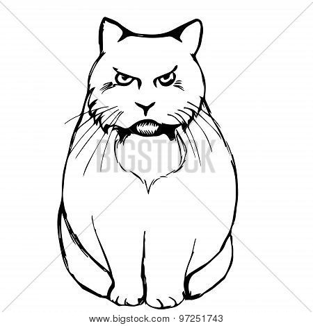 Angry Sad Cat Abstraction