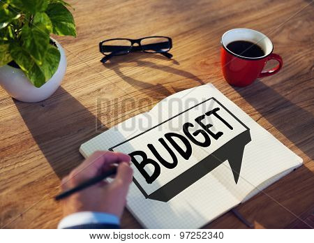 Budget Fund Investment Capital Economy Concept