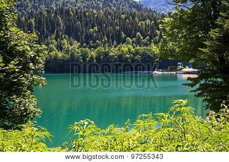 Photo mountain lake through the green trees
