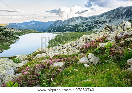 Mountain lake Bucura in Retezat National Park, Transylvania, Romania, Europe