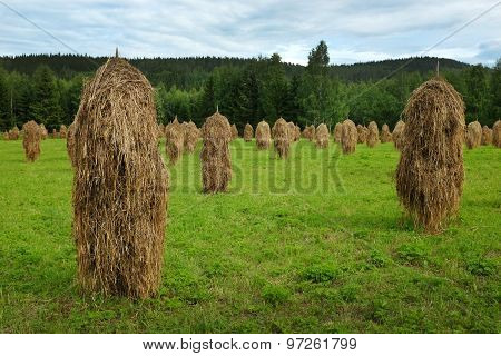 Haystacks In Field