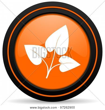 leaf orange icon nature sign