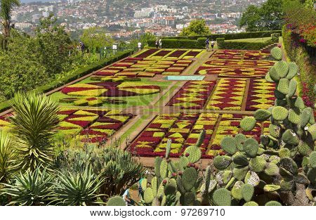 FUNCHAL, MADEIRA - June 15 2015: Funchal Botanical Gardens on July 15 2015 in Madeira island, Portugal, Europe