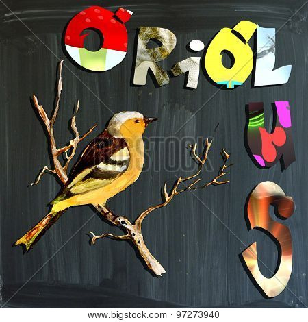 Joyous Child-s World, Mixed Media, Bird, Oriolus