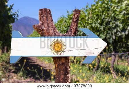 Argentina Flag wooden sign with winery background