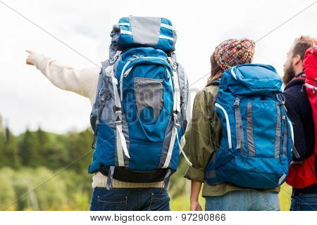 adventure, travel, tourism, hike and people concept - group of friends walking with backpacks from back