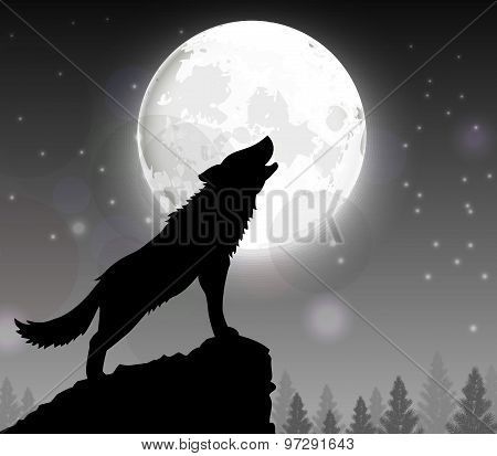 A wolf of Silhouette