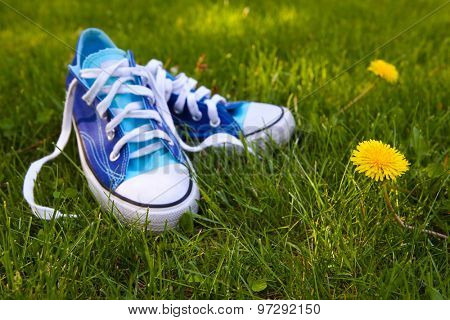 Blue sneakers outside in the grass. Focus on dandelion.