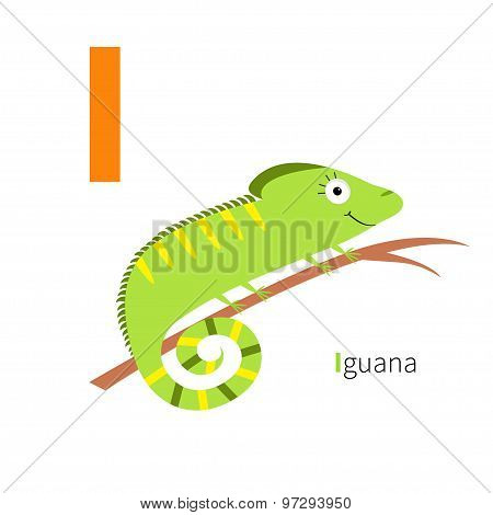 Letter I Iguana Zoo Alphabet. English Abc With Animals Education Cards For Kids Isolated White Backg